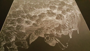 Drypoint on Plexiglass, Krystal Booth