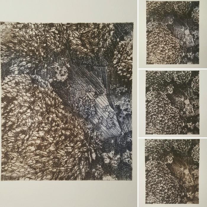Goose Barnacles, Variations of 15 Print Series, 2016, Krystal Booth